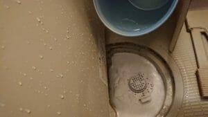 浴室排水口ー水